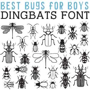 cg best bugs for boys dingbats