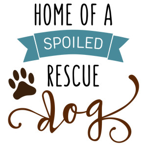 home of spoiled rescue dog