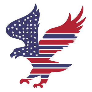 american flag eagle design