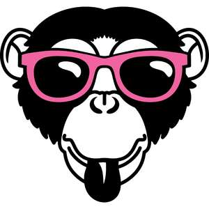 monkey and sunglasses