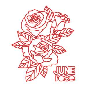june flower rose