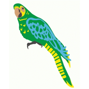bright parrot
