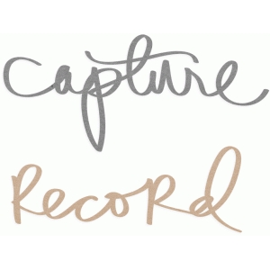 capture & record