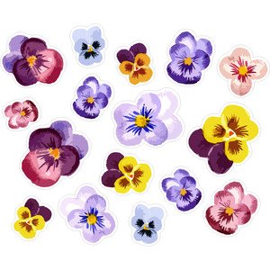 pretty pansies planning stickers