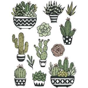 cactus and succulent stickers