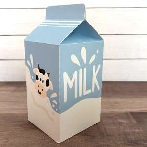 milk carton play food