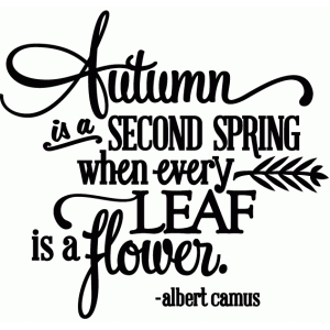 autumn is a second spring, fall flower - vinyl phrase