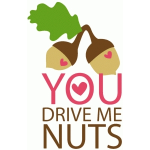you drive me nuts
