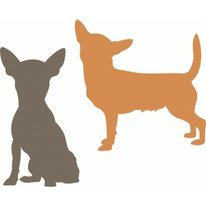 chihuahua dog set
