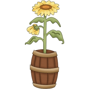 sunflowers in a barrel