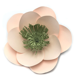 california poppy 3d