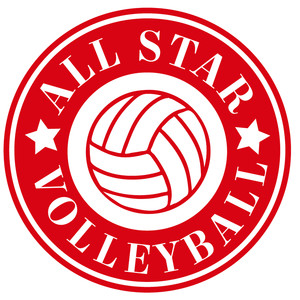 all star volleyball label