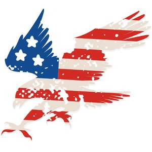 stars and stripes american eagle