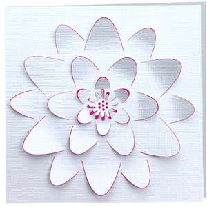 water lily 3d card