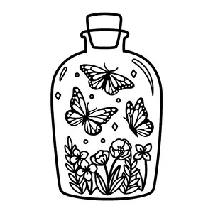 butterflies in a jar