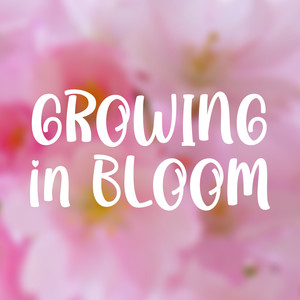 growing in bloom font