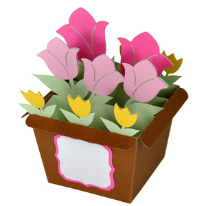 tulip flower pot - card in a box