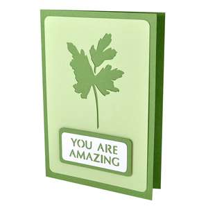 parsley you are amazing stencil card
