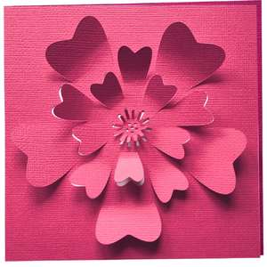 rose 3d flower card