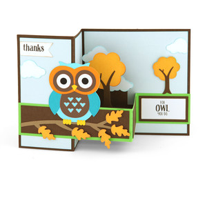 pop up box card owl