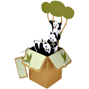 panda play card in a box