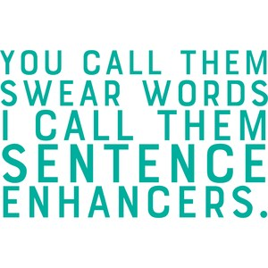 you call them swear words I call them sentence enhancers
