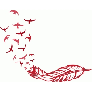 free bird feather