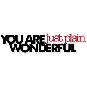 you are just plain wonderful