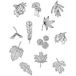 autumn nature coloring stickers