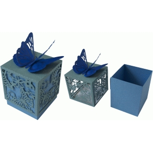 butterfly lace square box