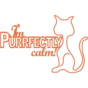 purrfectly calm phrase