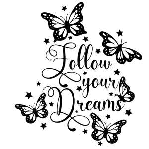 follow your dreams butterfly quote