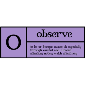 o is for observe pc