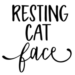 resting cat face phrase
