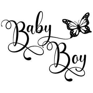 baby boy butterfly quote