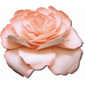 3d tiffany tea rose