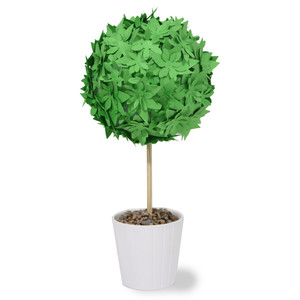 succulent medium topiary