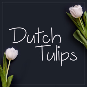 dutch tulips font