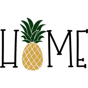 home pineapple