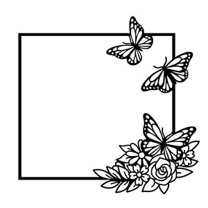 butterfly square frame