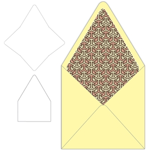 announcement style square envelope with liner