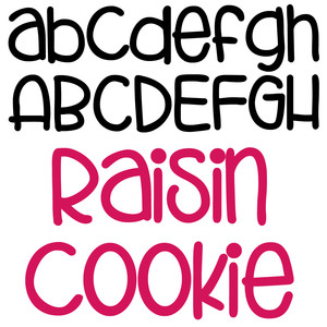 zp raisin cookie