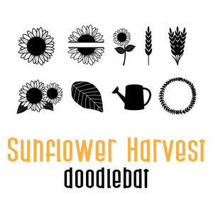 sunflower harvest doodlebat