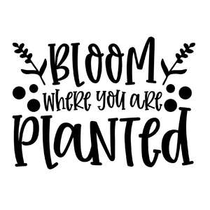 bloom where you were planted