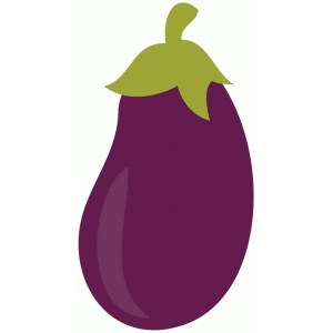 fresh vegetable - eggplant
