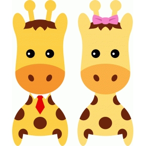cute couple giraffe