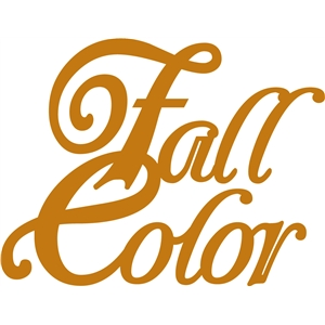 'fall color' word phrase
