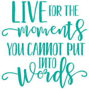 live for the moments you cannot put into words