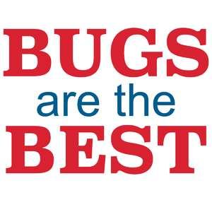 bugs are the best
