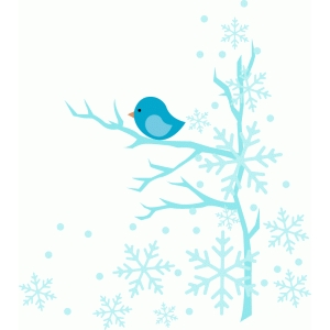 winter bird